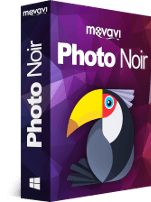 Movavi Photo Noir Discount Coupon